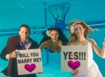 Have you ever heard about MERMAID Wedding Packages; let's have a Glanc